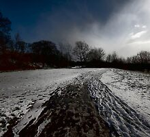 ITS BEEN A LONG WINTER by leonie7