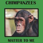 Chimpanzees Matter To Me (Bazia) by Amy Atherton