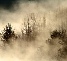 16.3.2013: Cold, Magical Morning II by Petri Volanen