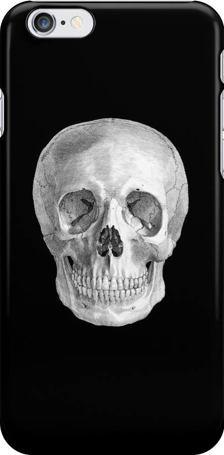 Albinus Skull 01 - Back To The Basic - Black Background by sivieriart