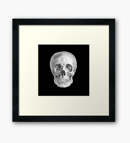 Albinus Skull 01 - Back To The Basic - Black Background Framed Print
