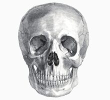 Albinus Skull 01 - Back To The Basic - Black Background Kids Clothes