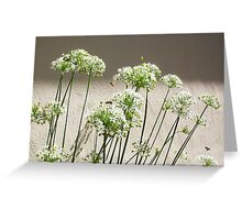 Bee - 16 3 13 - Ten Greeting Card