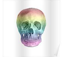 Albinus Skull 02 - Over The Rainbow - White Background Poster