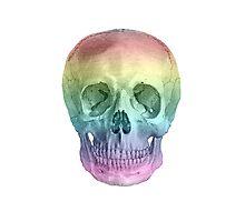 Albinus Skull 02 - Over The Rainbow - White Background Photographic Print