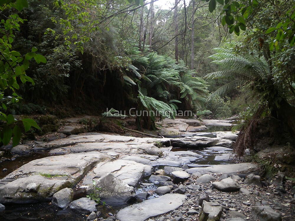 Contrasts!  Erskine Falls, Victoria, Australia.  by Kay Cunningham