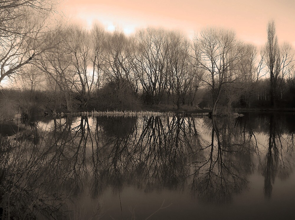 Winter at Anderton 2 by DavidWHughes