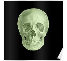 Albinus Skull 03 - Zombie Attack - Black Background Poster