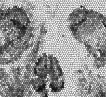 Albinus Skull 04 - Never Seen Before Genius Diamonds  - White Background Sticker