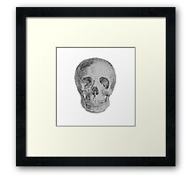 Albinus Skull 04 - Never Seen Before Genius Diamonds  - White Background Framed Print