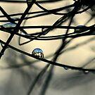 urban bubble by Ingz