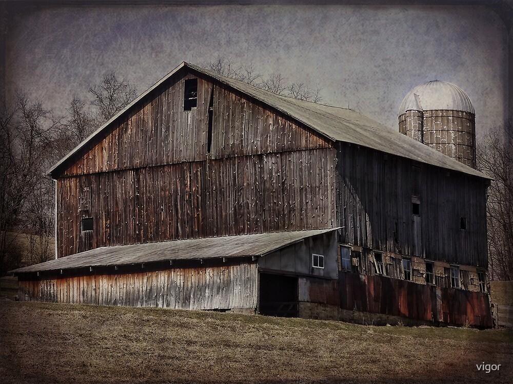 Farm Barn by vigor