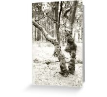 Tree 6 Greeting Card