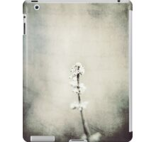 Summers Past iPad Case/Skin