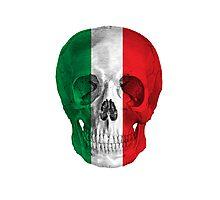 Albinus Skull 08 - Cappuccino Fairy Tale - White Background Photographic Print