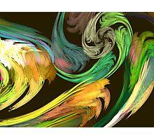 Fractal - Paisley Closeup Photographic Print