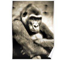Electric Gorilla Poster