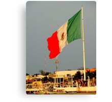 Mexican Flat Canvas Print