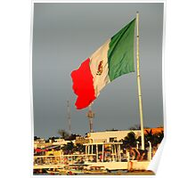 Mexican Flat Poster
