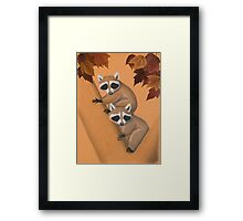 Fall Raccoons On Tree Framed Print