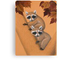 Fall Raccoons On Tree Canvas Print