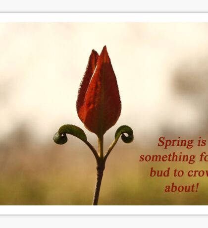 Spring is something for a bud to crow about. Sticker