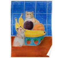 Hamsters In Fruit Bowl Poster