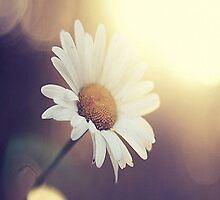 Flower by OfficialDeborah