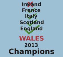 Wales 2013 rugby winners Kids Tee