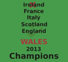 Wales 2013 rugby winners Kids Clothes