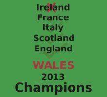 Wales 2013 rugby winners Baby Tee