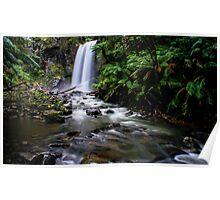 Hopetoun Falls, Otway Ranges Poster