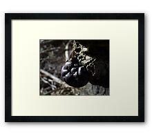 The Fist Framed Print
