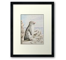 Rockhopper Penguin Framed Print