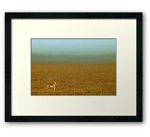 Duma plains Framed Print