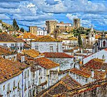 Obidos Castle by Brendan Buckley