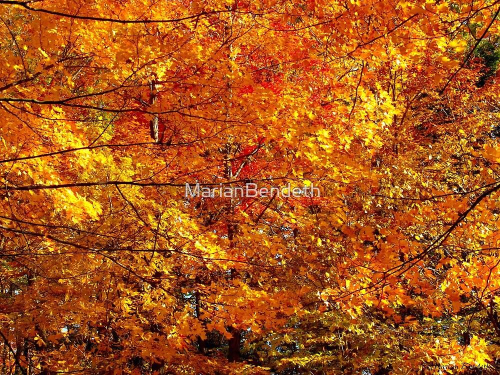 Leaf frenzy by MarianBendeth
