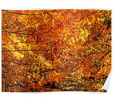 Leaf frenzy Poster