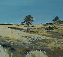 Summer fields of McAlister. No. 2 by enumerart