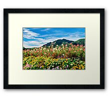 Flowers and Flatirons Framed Print