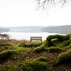 Kielder Water by Sarah Horsman
