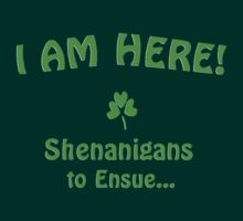 I am here! Shenanigans to ensue... by Weber Consulting