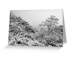 Foggy Winter's Day Greeting Card