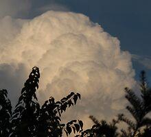 Accumulating cumulus by MarianBendeth
