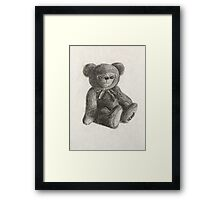 Teddy Bear Toy Framed Print