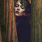 Redwood by colleenmcc