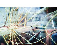Shattered Photographic Print