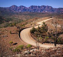 Bunyeroo Valley  by pbclarke