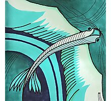 gliding fins Photographic Print