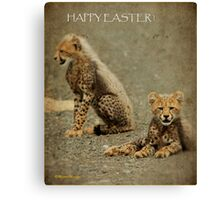 A HAPPY EASTER from the cheetah cups! Canvas Print